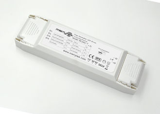 Waterproof Trailing Edge Dimmable LED Driver High Power for Ceiling Lamp